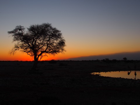 4 Jim Amrein perfect african sundowner